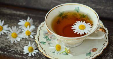 Chás podem ser bons aliados no inverno