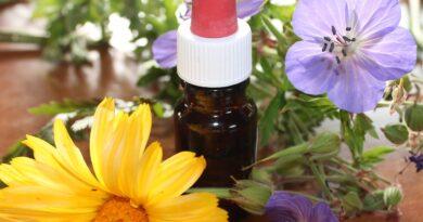 A visão da homeopatia