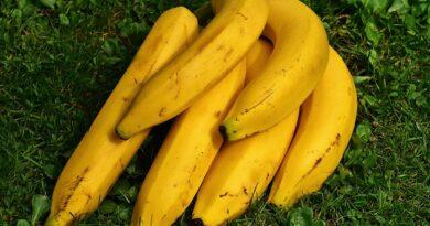Barrinha de castanhas e banana